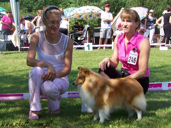 Loveosome sheltie - Jecky BOB Ukmerge 2010 (judge Irina Azen)