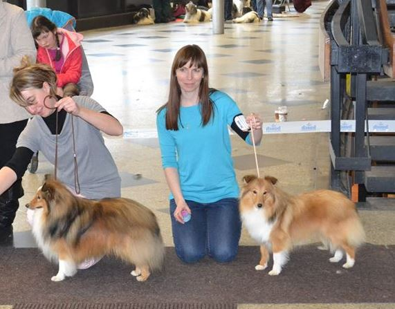Lovesoem sheltie - Macho Best Male, BOS, Lili Best Female